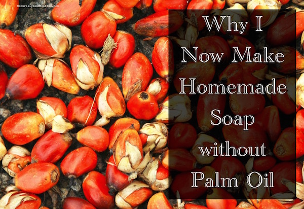 I Now Make Homemade Soap Without Palm Oil Naturally